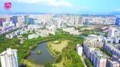 广电《龙岗新闻》龙岗区政府突出抓好七项工作 努力实现高质量发展