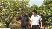 [新闻直播间]江西新余 干旱红色预警持续 高温少雨 当地展开生产自救