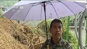 浙江丽水:降雨致山体滑坡 救灾工作正在进行