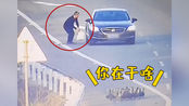江西一男子为捡鸭子在高速上乱停车 罚款200元驾驶证记6分