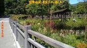 碧峰峡风景区三人游(上)201820610