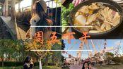 周五下午=去顾村公园+寿喜锅