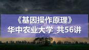 K9118-13_3.2噬菌体载体01