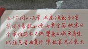 【硬笔手写】观公孙大娘弟子舞剑器行(唐代:杜甫) 摘录