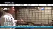 文化生活-李玮脱口秀 2008.8.4