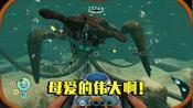 深海迷航12:制作孵化酶帮海皇孵化孩子,看到这场景差点哭了!