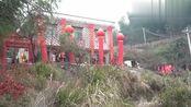 广东茂名姑娘嫁到湖南农村,新郎家住的大山上,新房子蛮漂亮的