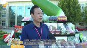 [早安山东]壮丽70年 丰收颂祖国 山东省庆祝2019年中国农民丰收节将在潍坊寿光三元朱村举行