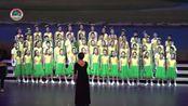 盘龙区第三十二届艺术节 金星小学《可可西里》