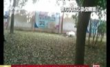 """[中国新闻]安徽阜阳:公牛市区""""闹事""""被特警击毙"""