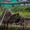 北京南海轮滑队,2015北戴河轮滑公开赛少年男子组速度过桩第四名张天乐—在线播放—优酷网,视频高清在线观看