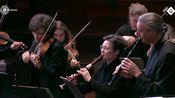 巴赫 第四号勃兰登堡协奏曲 BWV.1049 The Concerto Kln