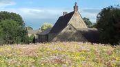 切尔西花园节资深评委的新花园建造之一:厨房花园 Part 1,James Alexander-Sinclair