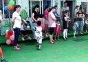 团北满族康乐幼儿园 六一活动 六一儿童节风采