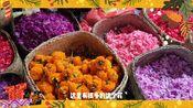 爱玛游巴厘岛|插花中的生活