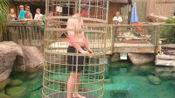 只需在笼子里待一年,就能拿千万年薪,为何至今无一人拿到薪资?