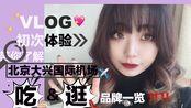 【PLUM】vlog/not a vlog 和我一起(简)逛北京大兴国际机场