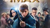 《神奇动物3》定档,将于2021年11月12日上映