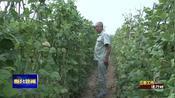 【视频】三重工作进行时:党支部领办合作社 抱团发展强村富民