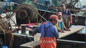 【山东】金秋开海船工补给食物远航,近海捕捞六天一往返!-威海Vlog-微观天下