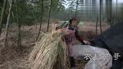 王四老妈煮了些黄豆,准备做些豆豉,这种农村土方法,你见过吗?