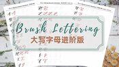 【手帐字体】brush lettering大写字母进阶版教程