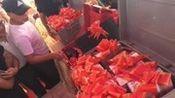 农村天价彩礼三斤三两,万紫千红一片绿,总共是多少钱