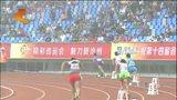 [河北新闻联播]关注河北省第十四届运动会 跳水比赛今日结束 秦皇岛获14枚成最大赢家