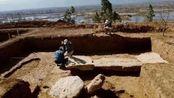 """江西省挖掘一古墓中,发现一条""""龙"""",专家立即申请武警保护!"""