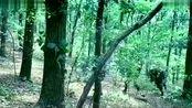 战狼:冷锋在树林狂奔躲避敌军枪火,终于近身击中敌军!