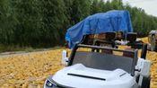 这辆车的性能也太好了,玉米地也能开!
