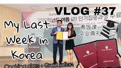 【丁大木】Vlog #37 - 韩国高丽大学毕业+汉江夜景+煮饭课(粤语-普字英文)//在韩国的最后一周