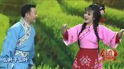 黄梅戏《打猪草》选段 演唱:田岷 张辉