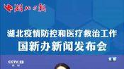 焦雅辉:武汉市累计治愈率已达到92% 重症、危重症治愈比例达到88%