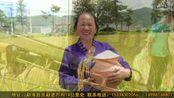 勐海县勐遮曼勐养农业专业合作社