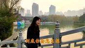 刘若英一首《为爱痴狂》,思君如恋,动人心魄