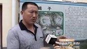 菏泽土元养殖招商加盟_标清_clip