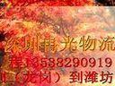 冉光、供应……深圳(龙岗)到潍坊专线``13538290919 程经理 ……www.5613563.com