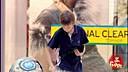 英国街头搞笑:捣乱的小孩 [www.tfysw.com] (流畅)