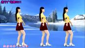 最新广场舞《飘雪的季节更想你》简单32步附分解动作一学就会!