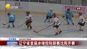 辽宁省首届冰球校际联赛沈阳开赛