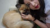 【kkyuu】化妆吃完再干活!洗衣服吃饭撸狗,星期天在家里做的工作 VLOG
