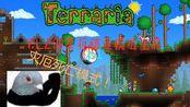 泰拉瑞亚1.3模组生存-p1