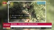 重庆铜梁:三轮扫墓坠崖消防员背出伤者