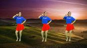青春洋溢广场舞《野花香》网红DJ 活力32步 新颖时尚 魅力无限