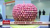"""[云南新闻联播]2019昭通苹果展销暨""""昭阳红""""品牌发布会举行"""