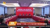 湖南省十三届人大三次会议 各代表团审查报告