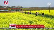 宁乡:靳江源头5000亩连片油菜花正盛开