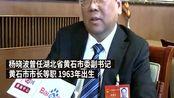默哀,长江财险董事长,原黄石市长因肺炎去世!