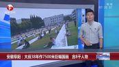 安徽阜阳:大叔38年作7500米巨幅国画 含8千人物